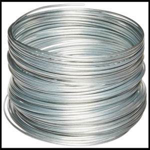 Bwg20 Hot Dipped Galvanized Steel Wire pictures & photos