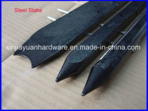 3/4′′ and 7/8′′ Round Steel Nail Stake Wholesale pictures & photos