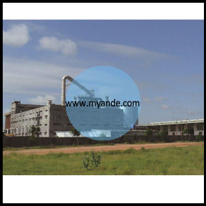 Complete Maize Starch Plant with ISO Approved pictures & photos