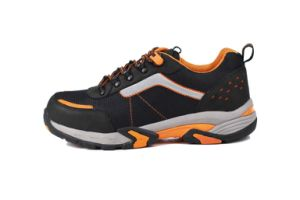 Trainer Safety Shoes with Steel Toe Cap (sn2004) pictures & photos