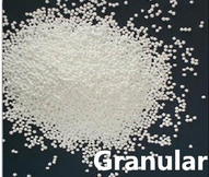 Food Grade Sodium Benzoate in Granule High Quality Preservatives Factory Supplier pictures & photos