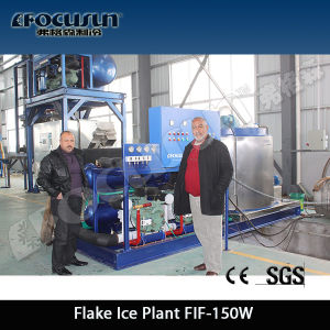 Beverage/Drinks Cooling/Food Processing/ Tube Ice Machine/Tube Ice Maker pictures & photos