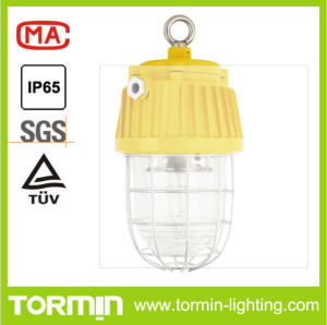 Explosion Proof Tunnel Light