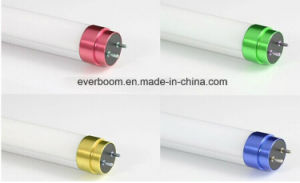 T8 LED Tube Lighting with Shining Color End Cap