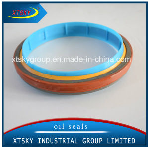 Heavy Duty Truck Oil Seal (3925520) pictures & photos