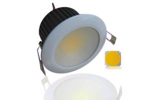 30W Epistar COB LED Downlight with Ce RoHS pictures & photos