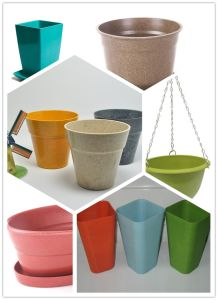 Eco Bamboo Fiber Flower Pot pictures & photos
