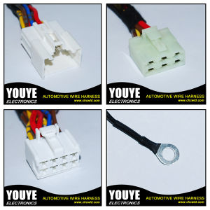 High Quality Auto Offroad LED Light Bar Wiring Harness Come with Relay & on/off Switch Dt Connector pictures & photos