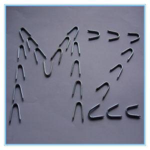 Good Quality Galvanized U Type Nail/U Fence Staple/U Nail pictures & photos