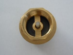 Brass Filter Valve with Plastic Core or Brass Core (a. 0195) pictures & photos