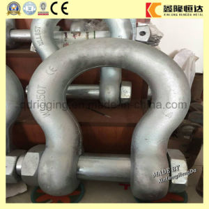 Us Type Hot Dipped Galvanized Shackle with Pin pictures & photos