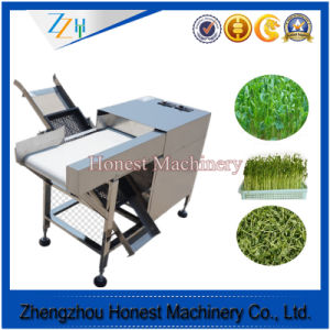 Professional Supplier of Vegetable Cutting Machine pictures & photos