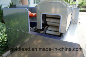Manufacturer Hot Sale Professional Economic Experienced FRP Pultrusion Machine pictures & photos
