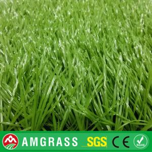 Chinese 60mm Football Soccer Artificial Grass, 6 Years Warranty Football Artificial Turf Grass, White Grass for Soccer pictures & photos