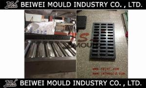 FRP Manhole Covers SMC Compression Mould pictures & photos