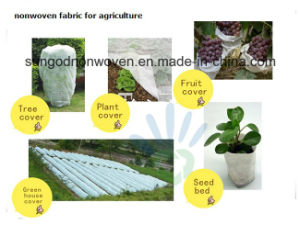 UV Resistant Spunbonded Nonwoven for Agriculture pictures & photos