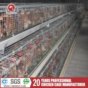 Hot Sale Poultry Equipment Broiler Chicks Rate Chicken Cages pictures & photos
