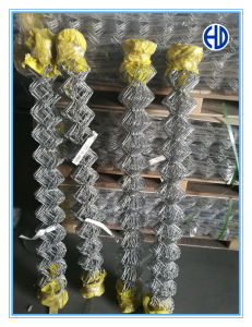 Electro Galvanized Steel Wire Hex Mesh Netting pictures & photos