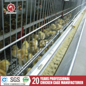 Poultry Chicken Farms H Type Stacked Broiler Chicken Coop pictures & photos