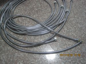 Stainless Steel Flexible Shower Hose, EPDM, Brass Nut, Chromed Finishing, Acs Approval pictures & photos
