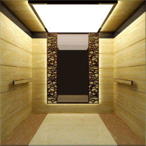 FUJI Zy Energy Saving Passenger Elevator with Traction Type pictures & photos