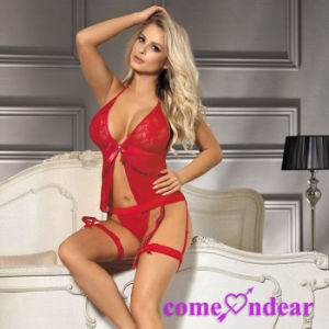 Dropshipping in Stock Low MOQ Can OEM Profashional Plus Size Sexy Lingerie pictures & photos