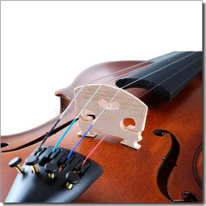 4/4 Full Size Beginners Student Violin (VG001-HPM) pictures & photos