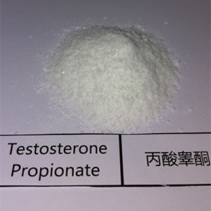 99% Purity Chemical Steroids Powder Testosterone Propionate for Bodybuilding pictures & photos