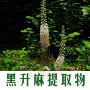 Black Cohosh Extract -Herbal Medicine for Female Hormore (KS002)
