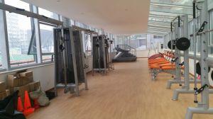 Professional Fitness Machine / Hack Squat (SL51) pictures & photos