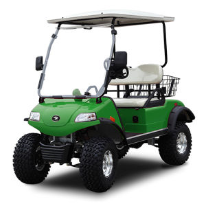 Electric Buggy Utility Vehicle-Hunting Cart (DEL2022D, 2-Seater) pictures & photos