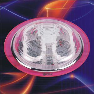 Ceiling Light Fixture Series (2) (ZD38.2D. A002)