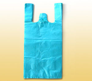 Recycle Shopping Bag (BDS016)