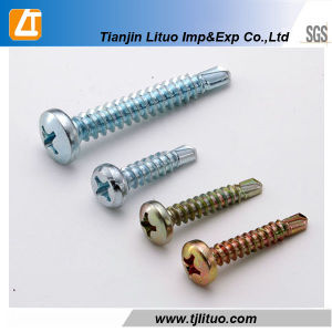 with EPDM Washer Galvanized Pan Head Self Drilling Screw pictures & photos