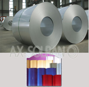 Galvalume Steel Coils / Sheets