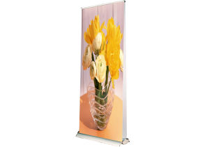 Display Stand Double Sides Roll up (DW-LD4D 85CM) pictures & photos