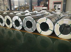 Regular Spangle Galvanized Steel Coil (Hot dipped) From China Manufacturer pictures & photos