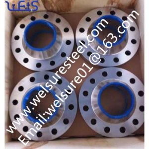 Wn Stainless Steel F 304L F51 F60 Flange