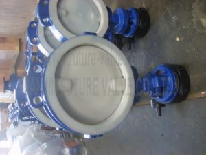PTFE Lined Wafer Worm Gear Butterfly Valve (D371F4-10/16)