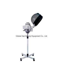 Hair Salon Equipment Hair Steamer (HQ-L858)