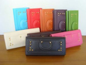 Women Wallet & Fashion Wallelts