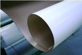 PTFE Etched Skived Sheet pictures & photos