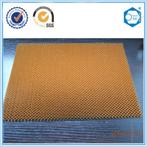 1mm Thickness Nomex Honeycomb for Racing Car pictures & photos