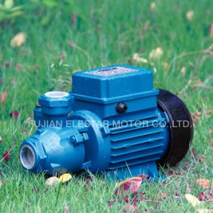 Horizontal Portable Clean Water Pump for Garden PS-126 pictures & photos