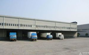 Consol/LCL Logistics From Shenzhen to Europe, U. S. a, Middle East