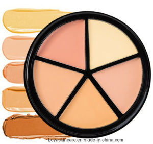 3D Five Colors Concealer Face Makeup Bronzer Makeup Foundation Cream