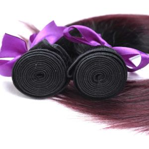 Red Burgundy Brazilian Hair Straight 100% Human Hair Weave Bundles Blends Well 10-26 Inches Non Remy Free Shipping pictures & photos