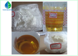 Testosterone Enanthate Anabolic Steroid Powder for Muscle Building pictures & photos