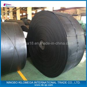 professional Manunfacturer Conveyor Belt Supplier pictures & photos