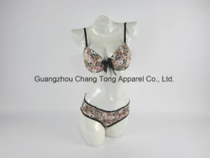 with ISO Certification Quick Dry Stylish Hot Fancy Bra and Panty Set pictures & photos